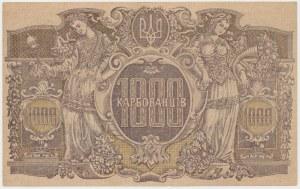 Ukraine, 1.000 Karbovanets (1919) - AH - wavy lines in watermark