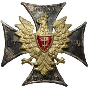 Odznaka, Front Litewsko-Białoruski 1919-1920 - duże braki w emalii