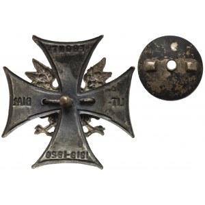 Odznaka, Front Litewsko-Białoruski 1919-1920