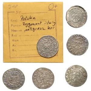 Półgrosze Aleksander i Zygmunt I Stary - Kraków (6szt)