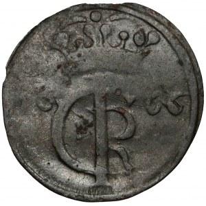 Jan II Kazimierz, Szeląg Toruń 1666 - masywna