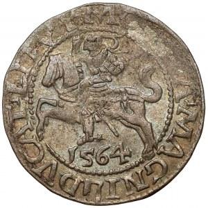 Zygmunt II August, Półgrosz Wilno 1564