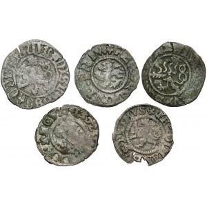 Władysław II Jagiellończyk, Ferdynand I, Maksymilian II - halerz jednostronny (5szt)