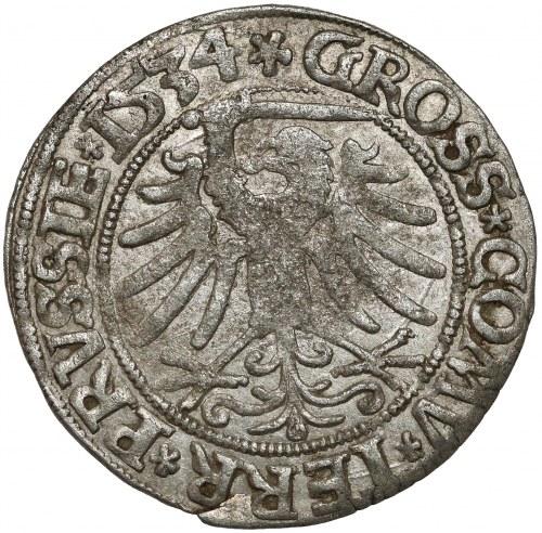 Zygmunt I Stary, Grosz Toruń 1534