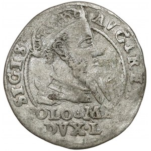Zygmunt II August, Grosz na stopę polską 1567, Tykocin