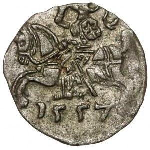 Zygmunt II August, Denar Wilno 1557