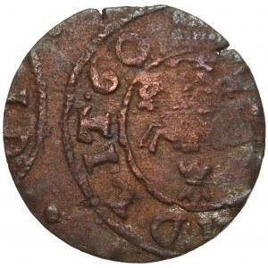 Jan II Kazimierz, SUCZAWA, Naśladownictwo Szeląga Wilno 1660