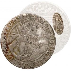 Zygmunt III Waza, Ort Bydgoszcz 1623 - kokardy - bardzo rzadki