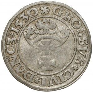 Zygmunt I Stary, Grosz Gdańsk 1530 - pierwszy - rzadki