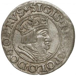 Zygmunt I Stary, Grosz Gdańsk 1535 - nowe pop. - wąskie krzyże