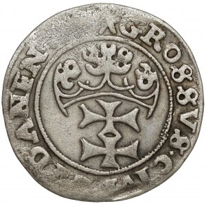 Zygmunt I Stary, Grosz Gdańsk 1540 - P(RIM) zamiast I - b.rzadki