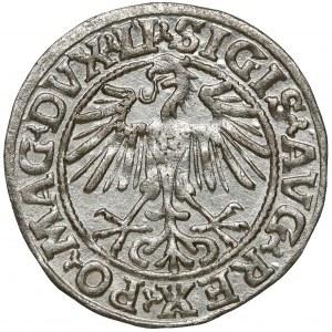 Zygmunt II August, Półgrosz Wilno 1549 - 9 dwukrotnie