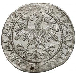 Zygmunt II August, Półgrosz Wilno 1559 - LITV