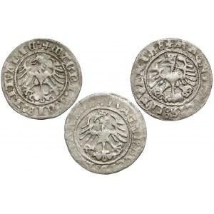 Półgrosze Zygmunt I Stary - Wilno 1513-1523 (3szt)