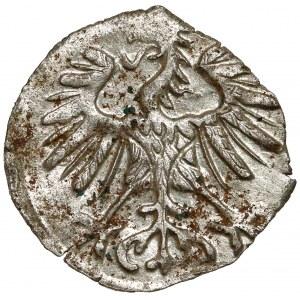Zygmunt II August, Denar Wilno 1554 - piękny