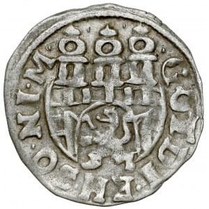Braunschweig-Wolfenbüttel, 1/24 Taler 1619