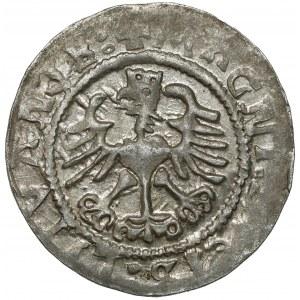 Zygmunt I Stary, Półgrosz Wilno 1524 - odwrócona 4 - piękny