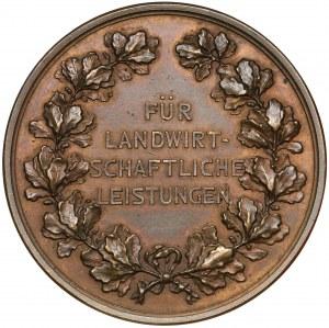 Medal, Śląsk, Rolnicza Wystawa Prowincji Śląskiej