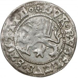 Pomorze, Bogusław X, Szeląg Dymin 1494