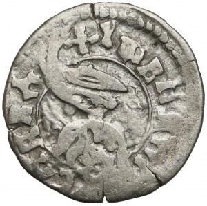 Rumunia, Hospodarstwo Wołowskie, Władysław II (1447–1456), Dinar