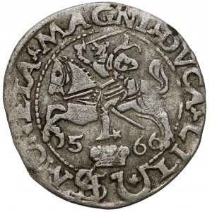 Zygmunt II August, Grosz na stopę polską 1566, Tykocin - JASTRZĘBIEC (R5)