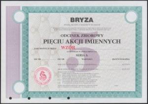BRYZA S.A. w Szczecinie, WZÓR Akcji