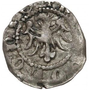 Kazimierz III Wielki, Denar Kraków bez daty - piękny