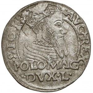 Zygmunt II August, Grosz na stopę polską 1566, Tykocin