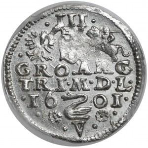 Zygmunt III Waza, Trojak Wilno 1601 - Łabędź nad V