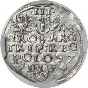 Zygmunt III Waza, Trojak Wschowa 1597 - MENNICZY