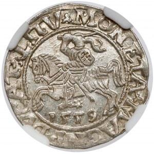 Zygmunt II August, Półgrosz Wilno 1559 - PIĘKNY