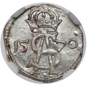 Zygmunt II August, Dwudenar Wilno 1570 - PIĘKNY
