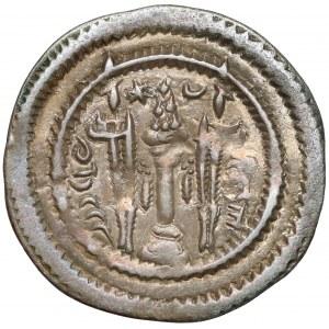 Sasanidzi, Kawad I (499–531), drachma