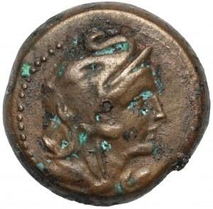 Egipt, Ptolemeusz V Epifanes (204-180 p.n.e.) AE Diobol, Aleksandria