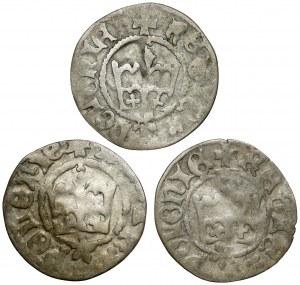 Półgrosze, Kazimierz IV Jagiellończyk - zestaw (3szt)