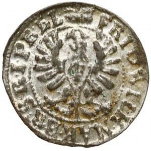 Prusy, Fryderyk Wilhelm, Szeląg Królewiec 1654 - piękny