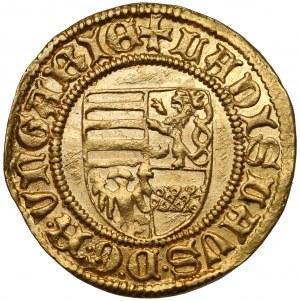 Węgry, Władysław V Pogrobowiec, Goldgulden (1447-1457), Krzemnica