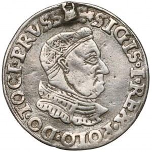 Zygmunt I Stary, Trojak Toruń 1535 - rzadki