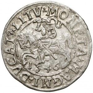 Zygmunt II August, Półgrosz Wilno 1546