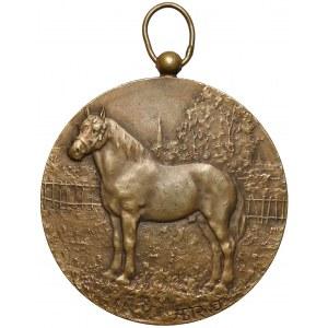 Francja, Medal bez daty z przedstawieniem konia (Rivet)