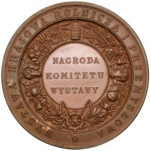 Medal, Wystawa Krajowa Rolnicza i Przemysłowa... Kraków 1887 (Pittner)