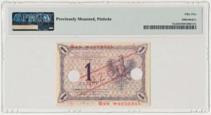 1 złoty 1919 - WZÓR - S.46 B