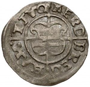 Zakon Kawalerów Mieczowych, Szeląg Ryga 1540