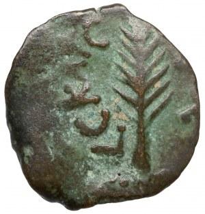 Judea, Porcius Festus (59-62 n.e.) Prutah