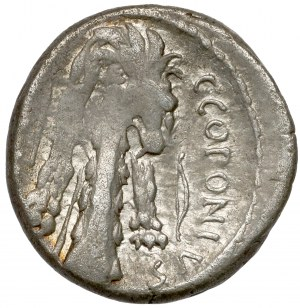 Republika, Q. Sicinius i C. Coponius (49 p.n.e.) Denar