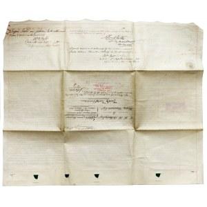 Anglia - Potwierdzenie długu 1864 r.