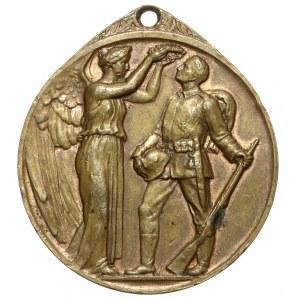 Niemcy, FÜRS DAGERLAND 1914 - medal honoru wojennego