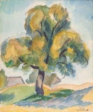 Pronaszko Zbigniew (1885-1958), Drzewo