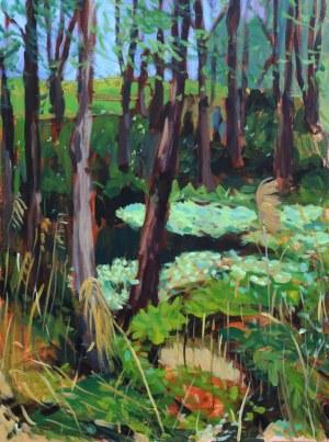 Paweł Świątek, Dziki las, 2020