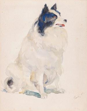 Błocki Włodzimierz, Szpic, 1918